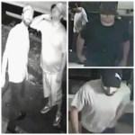Bandits Swipe $3 & Fax Machine During Borough Park Home Invasion [Video]
